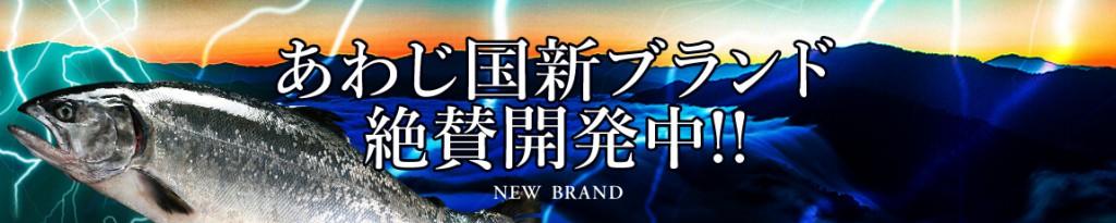 2016_08_bn_newsbrand